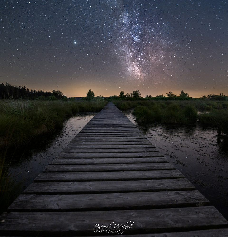 Between swamp and stars